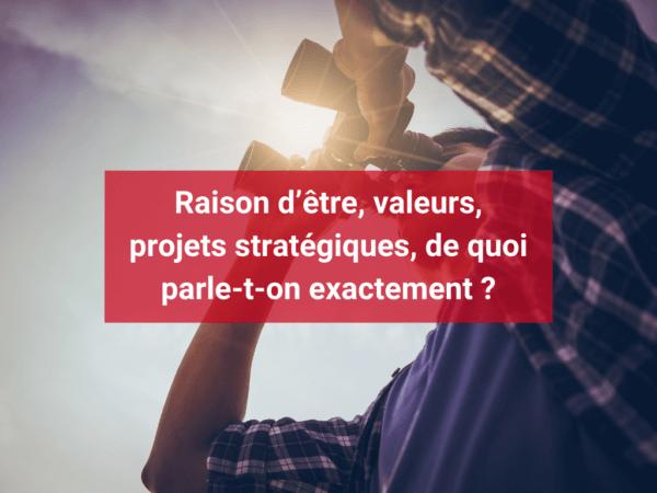 Raison d'être, valeurs, projets stratégiques, de quoi parle-t-on exactement ?